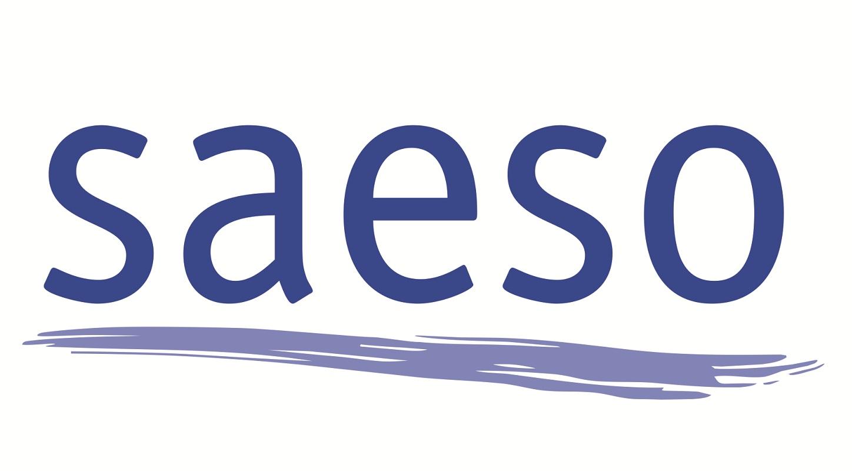Logo-Saeso-y-web-mod